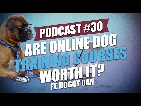TOP #30: Are Online Dog Training Courses Worth It? ft. Doggy Dan ...