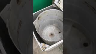 洗濯機の洗濯槽洗浄