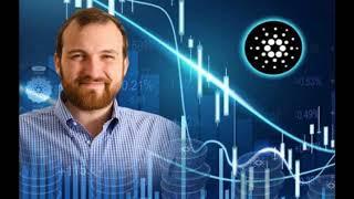 Cardano ADA's Charles Hoskinson on EOS Raising more Capital than Cardano _  Crypto news