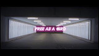 RAiK - Free As A Bird (prod. by Daniel Bess & RAiK)
