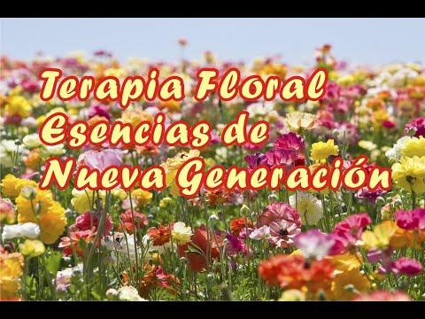 Terapia Floral. Esencias de Nueva Generación de Curso Terapia Floral. Esencias de Nueva Generación en Natursoma