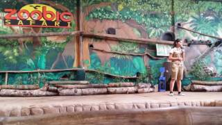 pet show @ zoobic safari  pampanga