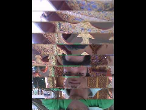 ปรสิตในวิดีโอปอดของมนุษย์