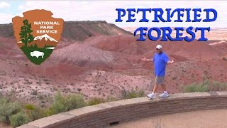 Petrified Forest National Park & Window Rock Camping