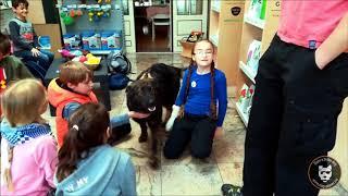 Enfants : une journée au Dog Center !