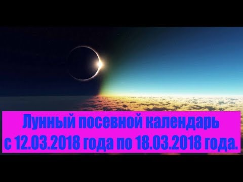 Совместимость по восточному гороскопу и знакам зодиака