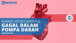 Gagal Jantung, Kondisi Jantung Tidak Mampu Memompa Darah dan Oksigen secara Efektif ke Seluruh Tubuh