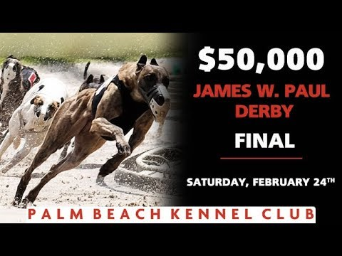 Palm Beach 2018 James W. Paul 3/8ths Mile Derby