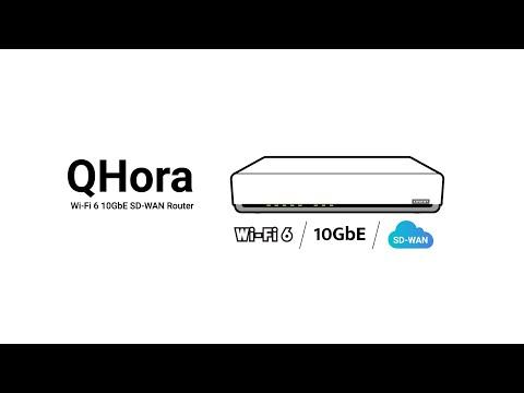 QNAP QHora-301W