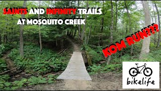 Saints Loop and infinity Connector - Brand New TRAIL