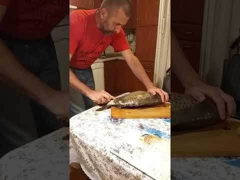 Pikkelysömör kezelése Sophora japonica- val