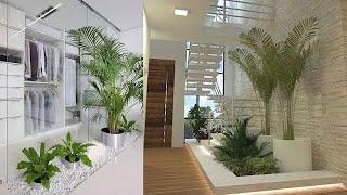 Beautiful Indoor Garden Plants Interior Ideas