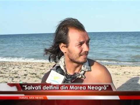 """""""Salvaţi delfinii din Marea Neagră"""" – VIDEO"""