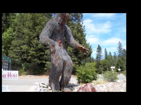 I Can't Believe Bigfoot Got This Close To This 19 Year Old Girl (Video)   Paranormal   Before It's News