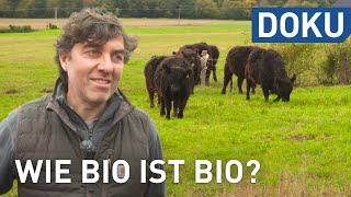 Wie bio ist Bio? | doku
