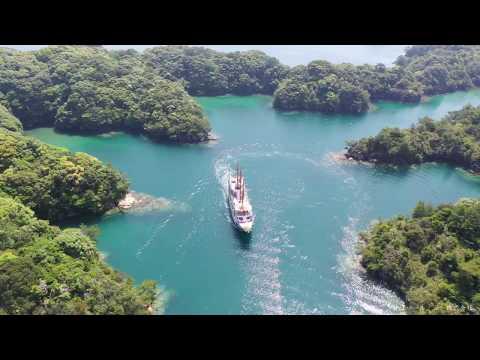 新緑の九十九島をドローンで楽しむ