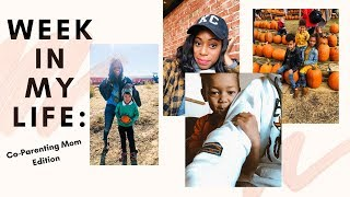 WEEK IN MY LIFE: Co-Parenting Mom, Family Photo Shoot & Pumpkin Patch Adventure