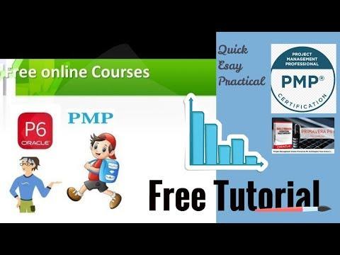 Free Download-Tutorial in Oracle Primavera P6 Professional 18 ...