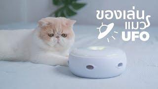 ของเล่นช่วยแมวออกกำลังกาย UFO 🛸