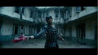 Vikram, Jiiva, Isha Shravani, Tabu, Lara Dutta - David (Tamil) Trailer.