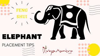 Feng Shui Elephant Placement - Benefits Of Keeping An Elephant Figurine In The House, Fertility Cure