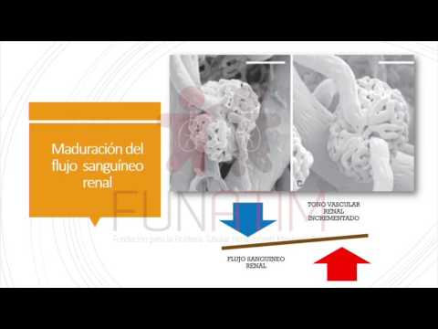 Hipertensión portal y su tratamiento quirúrgico