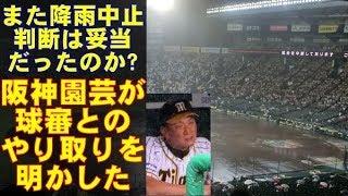 阪神タイガース、また雨でノーゲームに…阪神園芸の奮闘も、再開は不可能だったのか?阪神園芸の金沢部長が、審判とのやり取りを明かした。