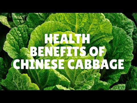 , title : 'Health Benefits and Nutrition Facts Of Chinese Cabbage - Vitamins, Iron, Calcium, Protein and More.