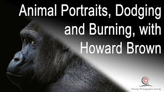 Editing Animal Portraits Photographs, with Howard Brown
