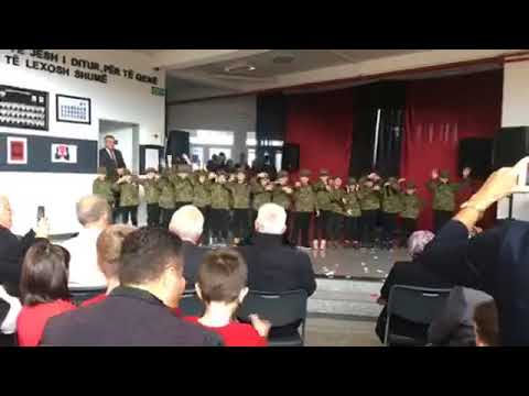 Festa e 28 Nëntorit, pjesa II-re, 2017