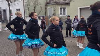 preview picture of video 'Rosenmontagsumzug Geisenfeld 2015'