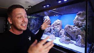 My NEW beginner Saltwater aquarium - The king of DIY