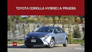 Toyota Corolla Hybrid, a prueba: la mejor cara de Prius