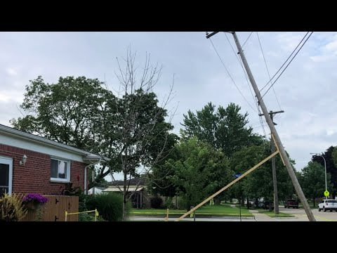 Trenton homeowner rigs brace for leaning power pole until DTE repairs it