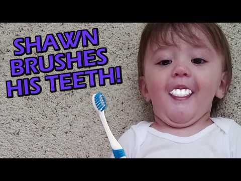FUNnel Vision SHAWN'S 1st STEPS + Won't Go To Sleep + Brushing Teeth!! (FUNnel Vision Vlog) Mp3