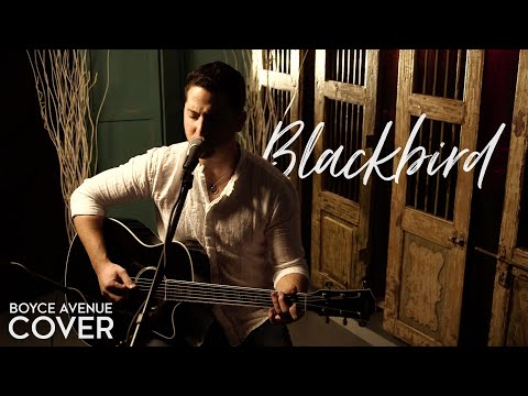 Blackbird - The Beatles (Boyce Avenue acoustic cover) on Spotify & Apple