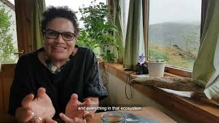Jackie Kay shares her poetry writing and reading tips | Foyle Young Poets 2019 judge