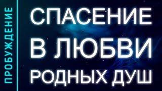 ПРОБУЖДЕНИЕ # 8. СПАСЕНИЕ В ЛЮБВИ РОДНЫХ ДУШ (Андрей и Шанти Ханса)