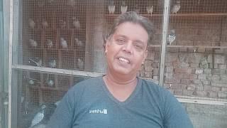 Kabootar ko thanda Pani Dena 30 September 2019