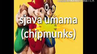 @official Young C August Sjava (chipmunks) Umama @sjava @chipmunks