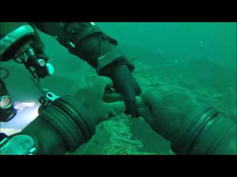 NORSKO - BERGEN - potápění, svět pod hladinou