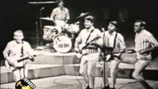 The Beach Boys - Help me Rhonda