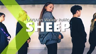 Lay   Sheep (Alan Walker Relift)  JaneKim Choreography.