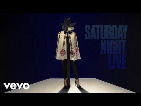 Bird Set Free (Live from SNL)
