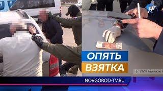 Житель Валдайского района попытался «откупить» друга от уголовного дела взяткой следователю