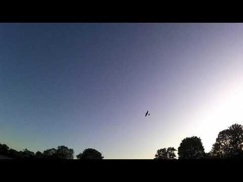 lidl-glider