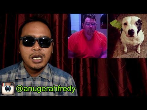 Bokep vs hewan   Видео