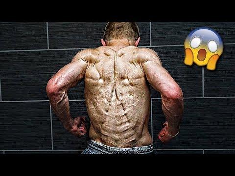 Le nom des muscles principaux du corps