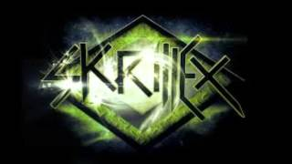 first of the year (equinox) - skrillex [official].mp3