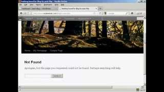 WordPress Tutorial - How to Customize Your 404 Error Page in WordPress